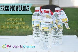 Happy National Lemonade Day!  Let's celebrate with a FREE printable!