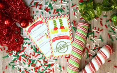 Amusing Naughty or Nice Notes From Your Elf